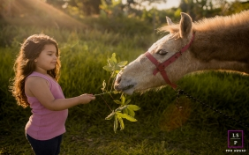 Rio de Janeiro Girl Lifestyle Portraits Brazil | Photo contains: child, branch, leaves, horse, grass, nature