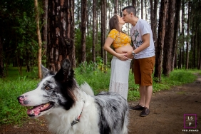 Sao Paulo Maternity Portrait Session with the Dog | Photo contains: couple, pregnancy, picture, pet, trail, trees, path, ideas