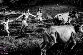 Minas Gerais Lifestyle Family Portrait Session | Photo contains: mom, dad, boy, girl, running, cows, steer, cattle, farm, ranch