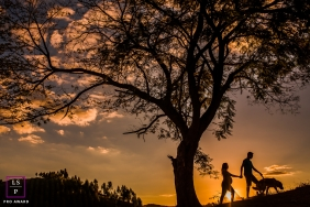 Family Portraits in Minas Gerais Brazil | Lifestyle Photography Session contains: couple, dog, pet, pregnancy, tree, silhouette, sunset