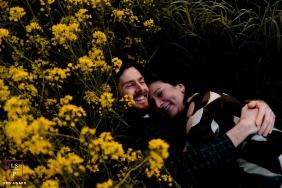 Groningen, Netherlands, Europe couple hugging portrait in the yellow flowers