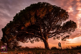An afternoon Perpignan Big tree at sunset lifestyle photo session with a young couple face to face