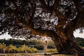 Perpignan Pyrenees-Orientales lifestyle outdoor pregnancy shoot Under the oldest juniper of Europe