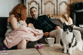 Font-Romeu Lifestyle Pet Portrait of a family cat while baby is nursing in the background in France