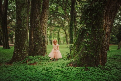 Minas Gerais Creative Lifestyle Portrait image of a small girl strolling in the woods