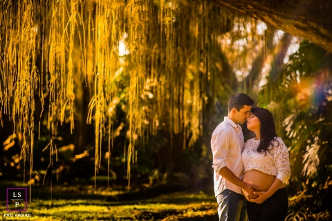 Maternity Portrait Photography in Gerais Brazil | Image contains:  couple, maternity, park, tree