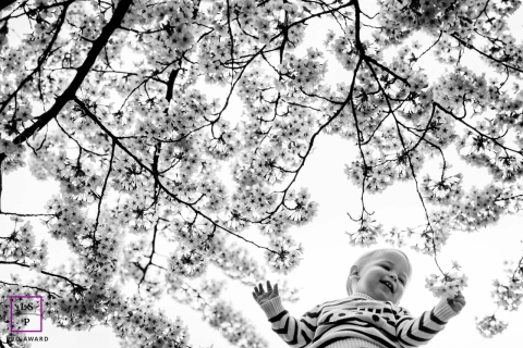 Lifestyle Kid Portrait Photography in Occitanie | Image contains: baby, session, black and white, trees, blooming, flowers, toddler