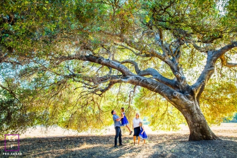 Family fun under a tree during a lifestyle family portrait session | San Francisco Family Photography