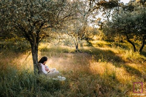 breastfeeding under the olive trees   Occitanie lifestyle family photography