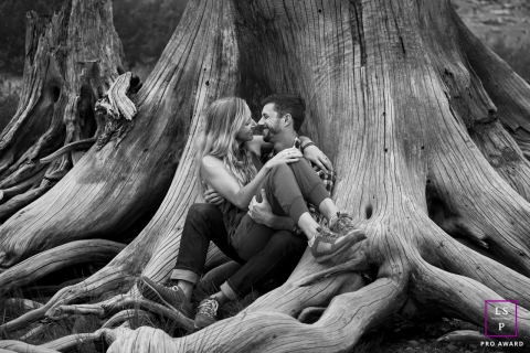 Seattle couple sitting in large truck of tree for a portrait session in Washington State
