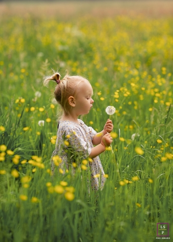 Zwolle small girl poses for a lifestyle photo in the field blowing a dandelion