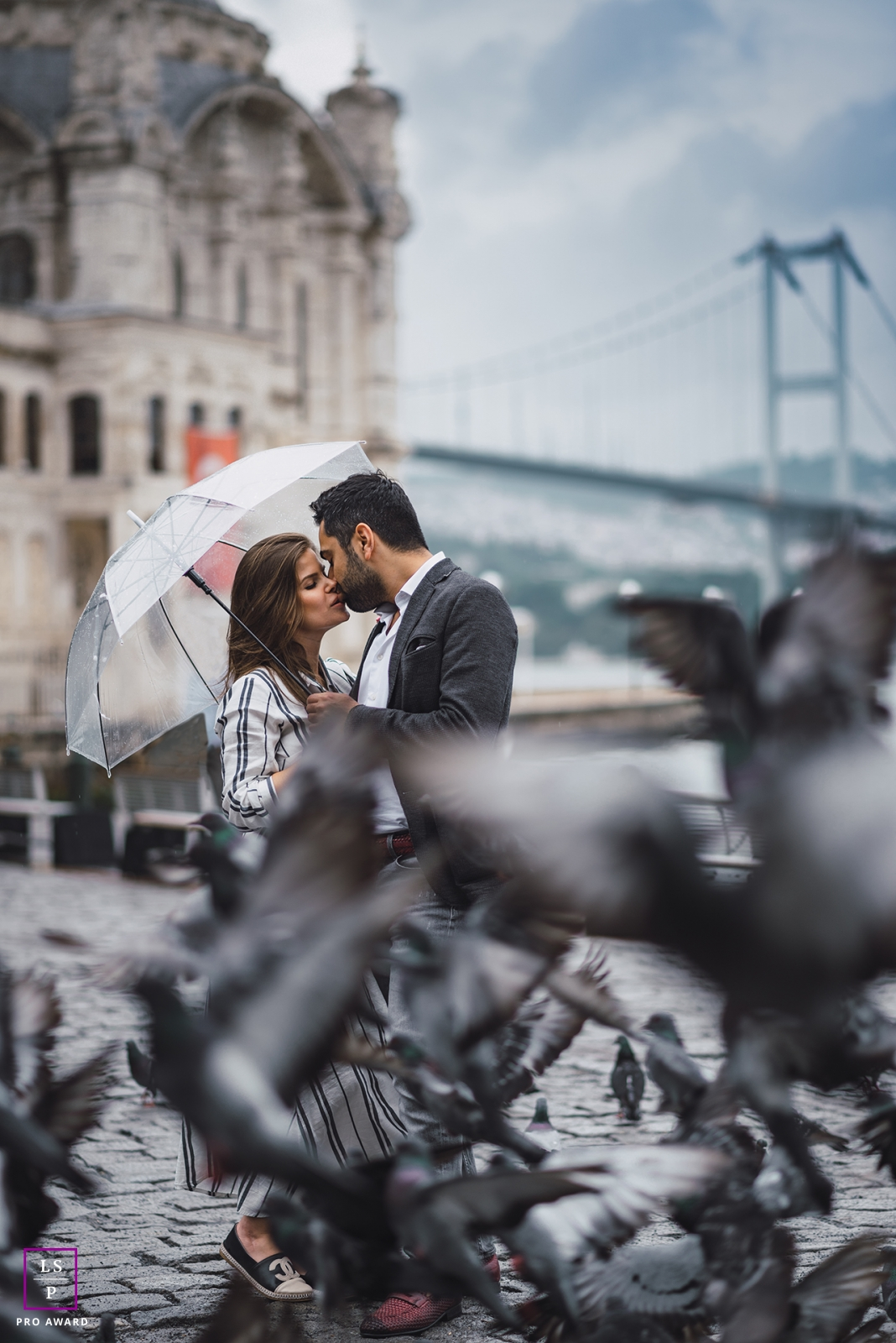 Istanbul Turkey Lifestyle Couple Photographer   Portrait of kissing couple under umbrella in the rain with birds and a bridge