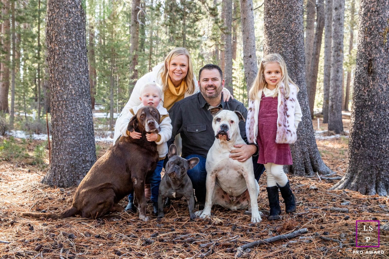 Artistic Lake Tahoe Lifestyle Photography of a Family with their dogs in the woods up at Lake Tahoe