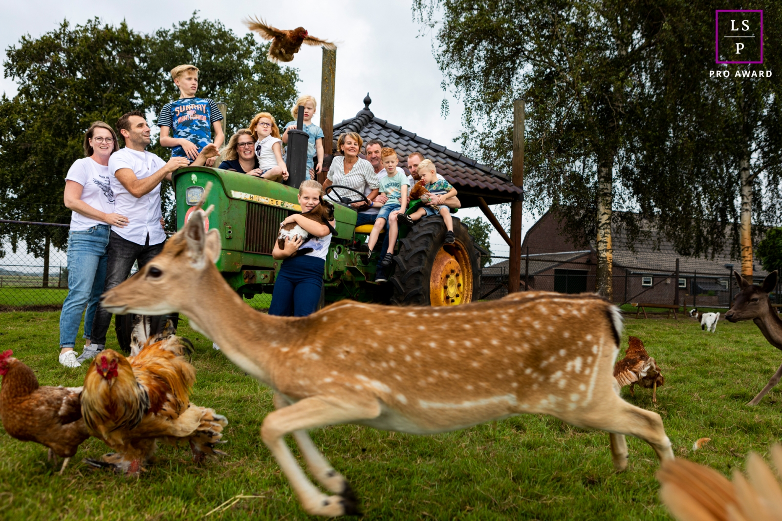 Gelderland Lifestyle Family Photographer created this artistic portrait on the farm with a tractor, deer and chickens
